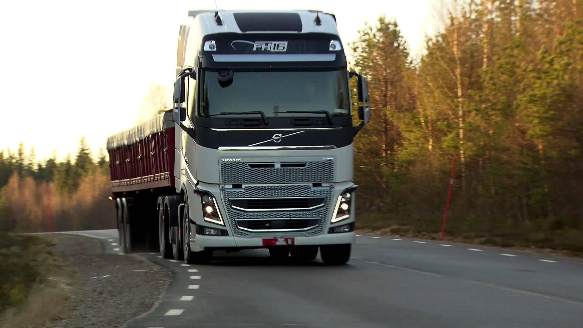 Международные автоперевозки грузов Украина, Россия, Польша, СНГ, Восточная и Западная Европа, Балтия, Скандинавия, Балканы, Азия.